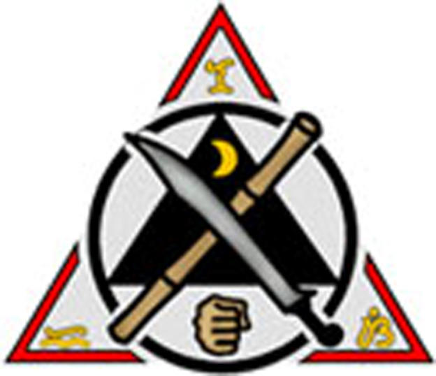 Filipino Kali classes